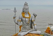 Shiva, Business